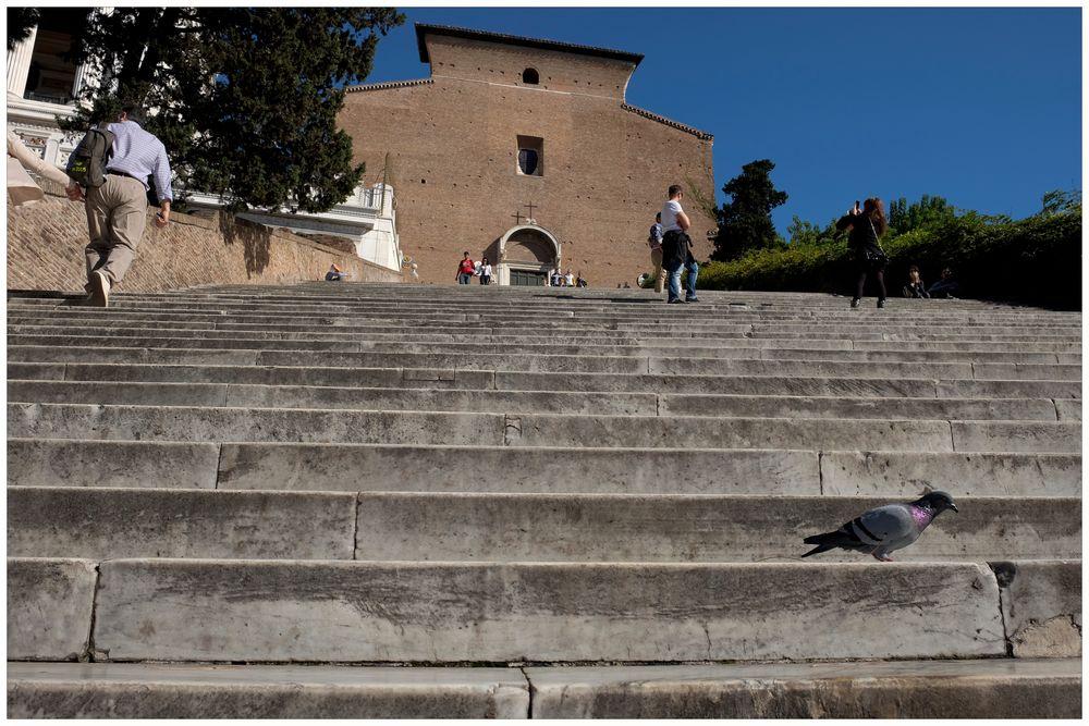 Fliegen müsste man können! An der Piazza Venezia in Rom