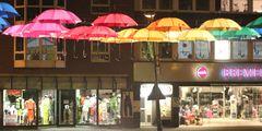 Fliegende Schirme I