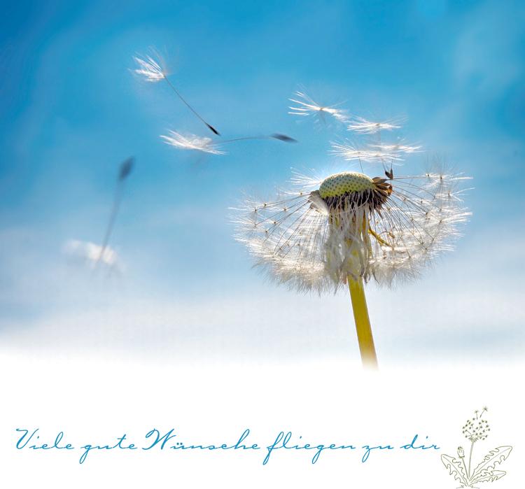 fliegende Wünsche