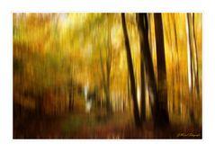 Fliehender Herbst