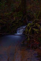 Fließendes Wasser aus dem Dschungel?