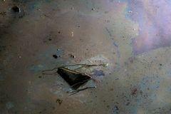 Fliessendes Wasser erzählt Geschichten 01