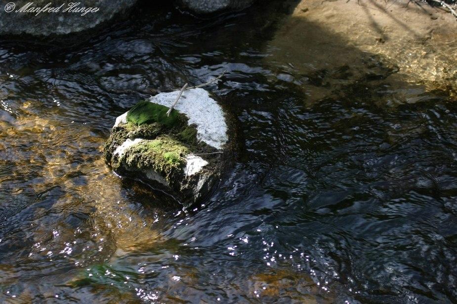 Fließendes Wasser trifft Stein :-))