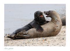 Flirt am Strand....