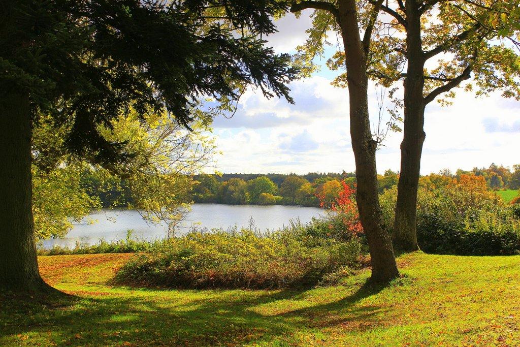 Flörkendorfer Mühlenteich im Herbst