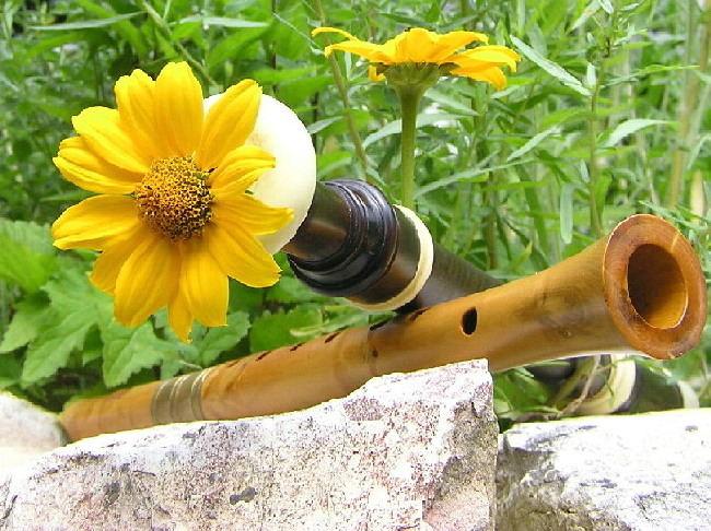 Flöten aus anderer Perspektive