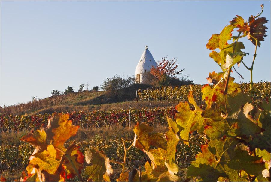 Flonheim im Herbst