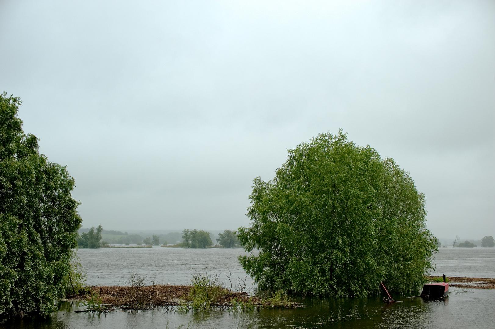 flood water II