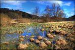 Flooding meadows