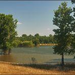 flooding nature