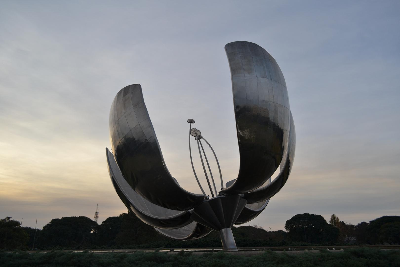 flor de Buenos Aires