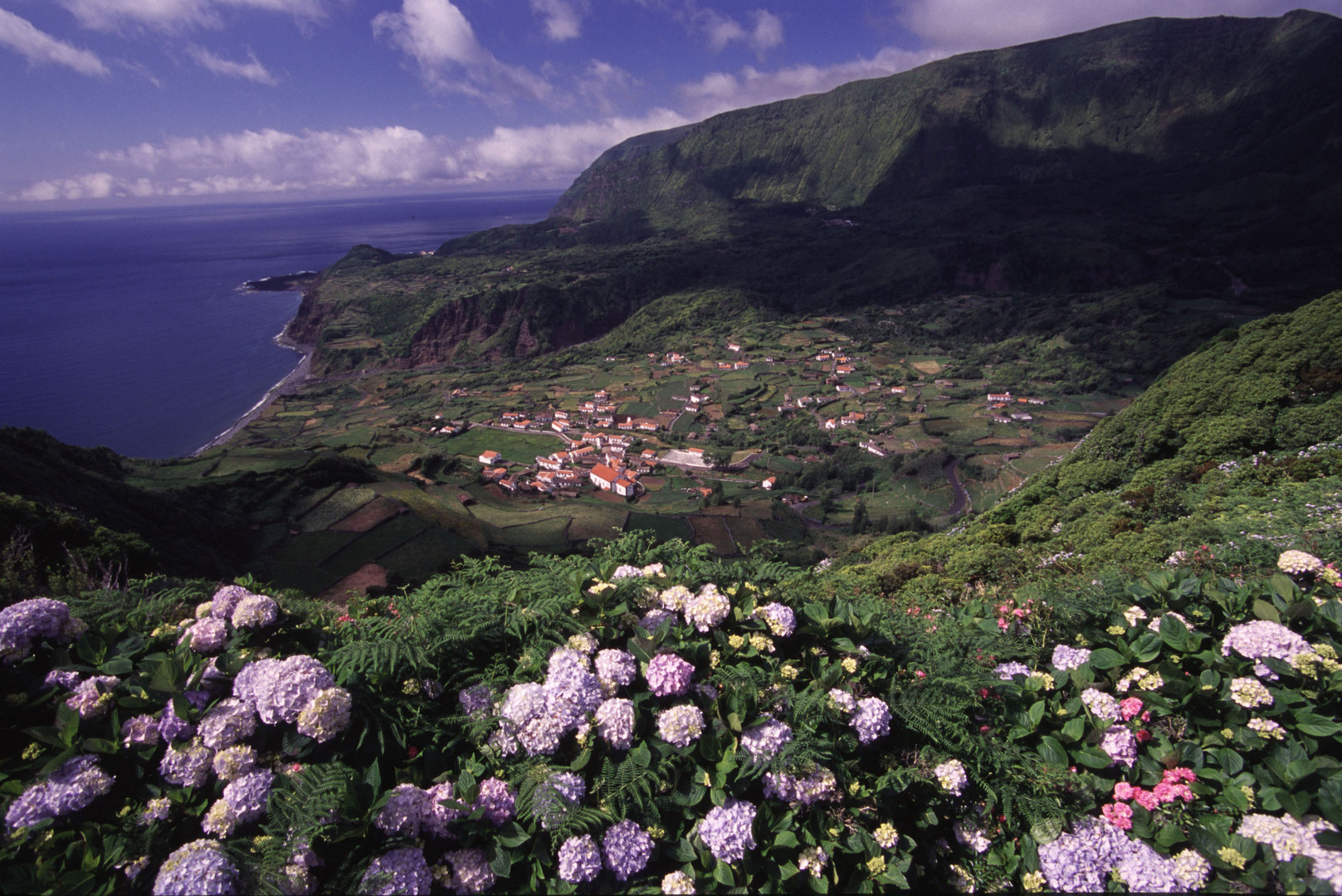 Flores / Azoren
