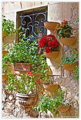 Flores en la fachada de la casa (Blumen an der Hausfassade)