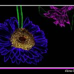 Flores en neon