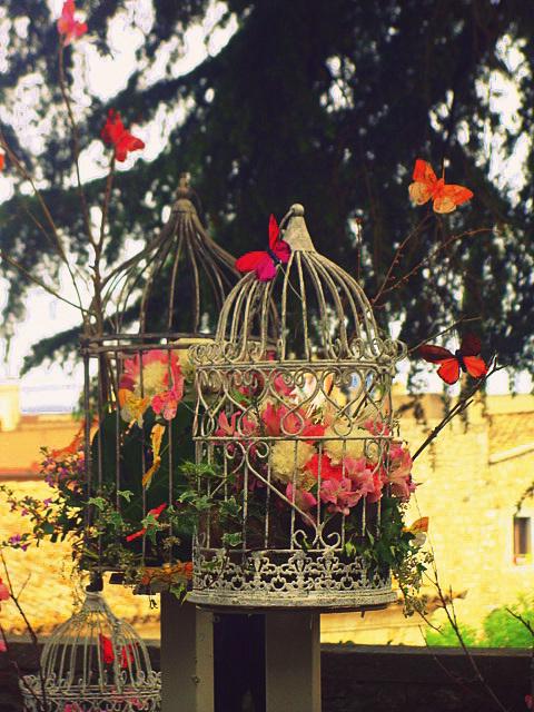 flores encerradas