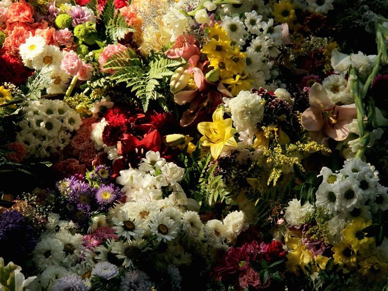 Flores para mi madre