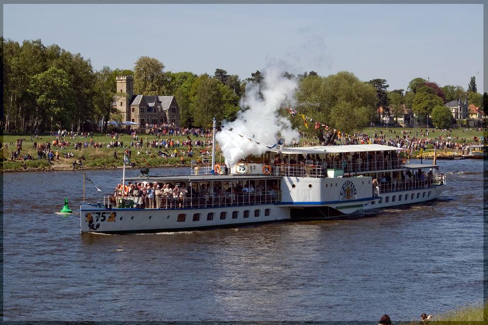 Flottenparade bei Pillnitz