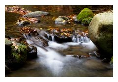 Flow at late autumn-II