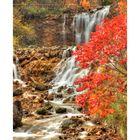 Flow in the fall II