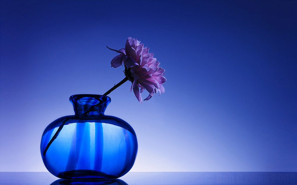 flower and glass