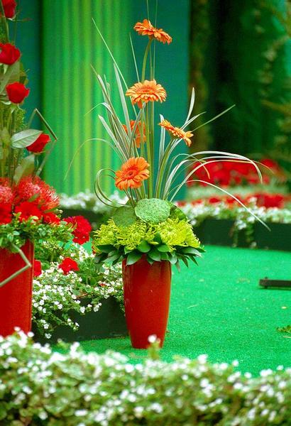 Flower-Festival in Covent Garden