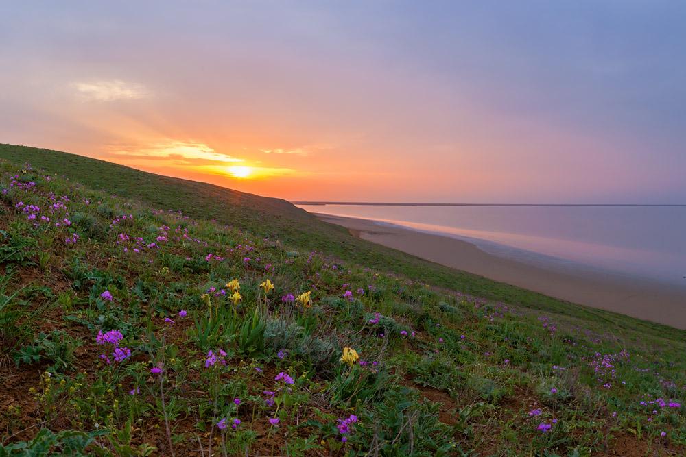 """""""Flower garden near the salt lake"""""""