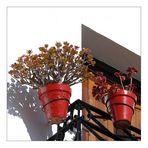 - flower pots -