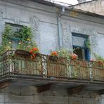 """Flower """"power"""" (or how can flowers make an old balcony nicer)"""