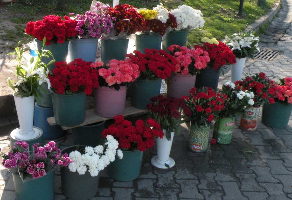 Flower shop !!!!!!