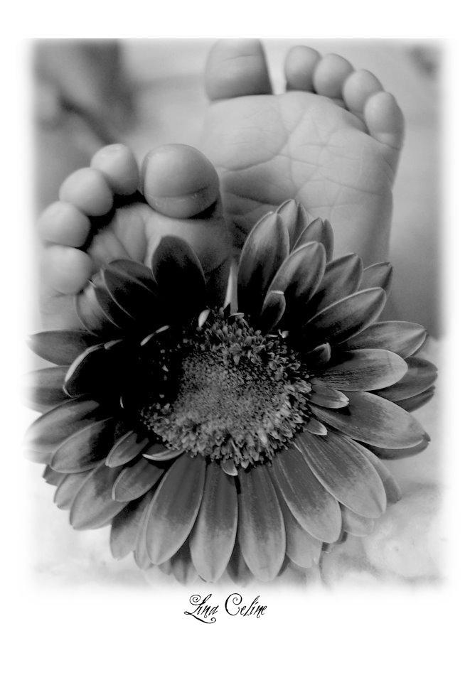 ..flowers..