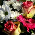 *** flowers for all of you ***