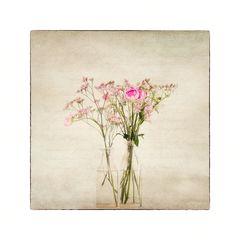 Flowers of Garden XI