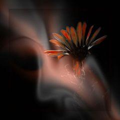 Flowers smoke