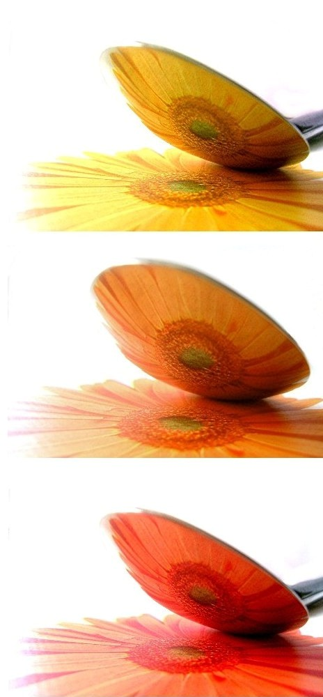 """""""flowerspoon III"""""""