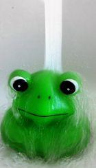 Flowing Water Frog.