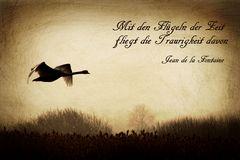 Flügel der Zeit