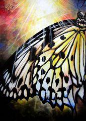 Flügel ins Licht