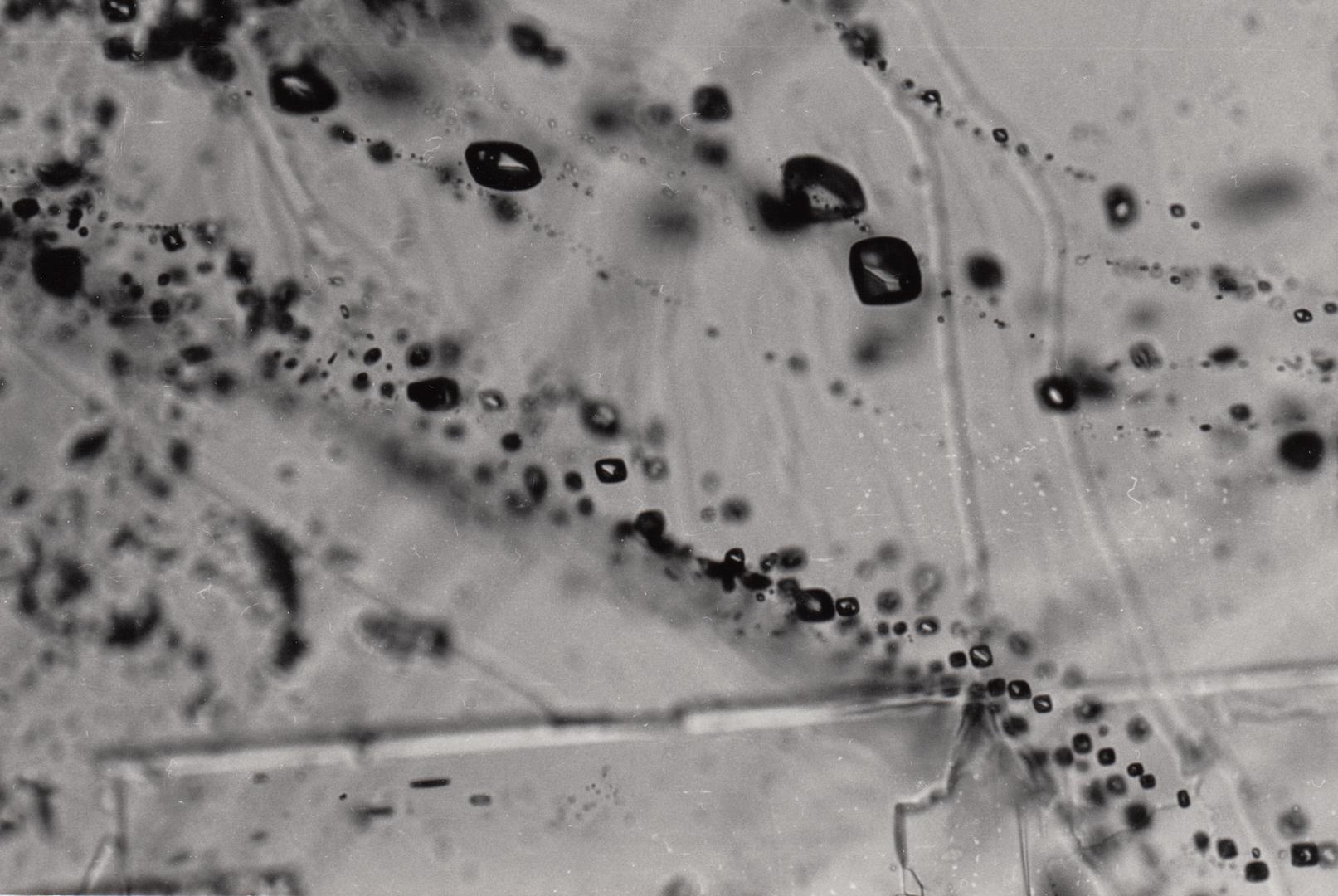 Flüssigkeitseinschlüsse in Mineralen - hier in Calcit