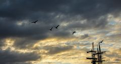 Flug im Morgengrauen...................
