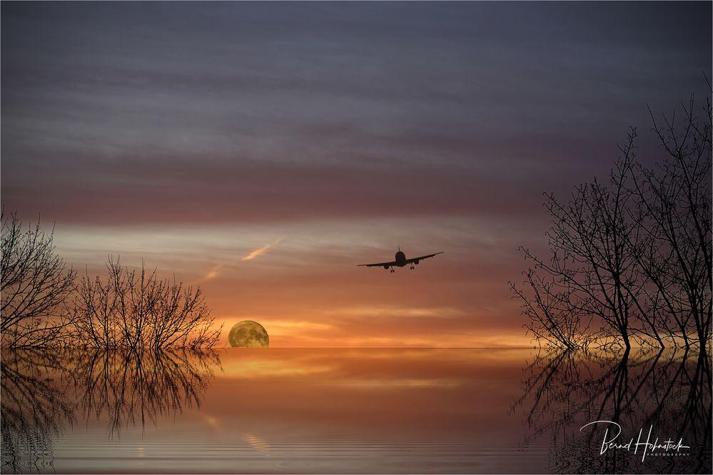 Flug in den Süden .....