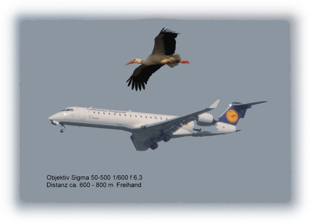 Flugbegleitung im Anflug auf Basel