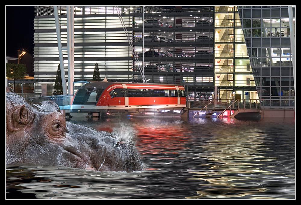Flughafen München unterwasser?