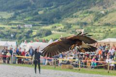 Flugshow am Südtiroler Ritter Turnier