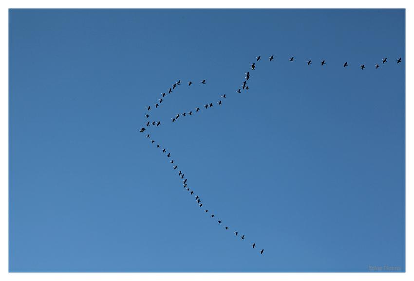 Flugzeit an strahlend blauen Himmel