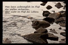 Fluß des Lebens