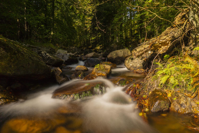 Fluss Im Harz 4 Buchstaben Kreuzworträtsel
