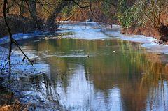 Fluß im Winter mit Nutria