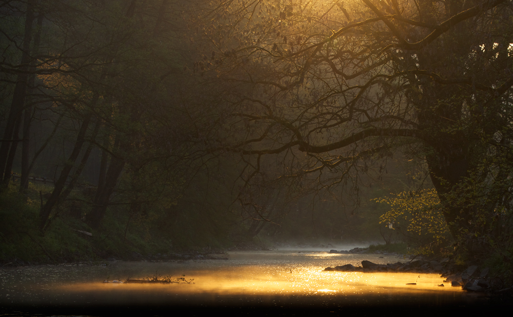 Fluss Romantik (2)
