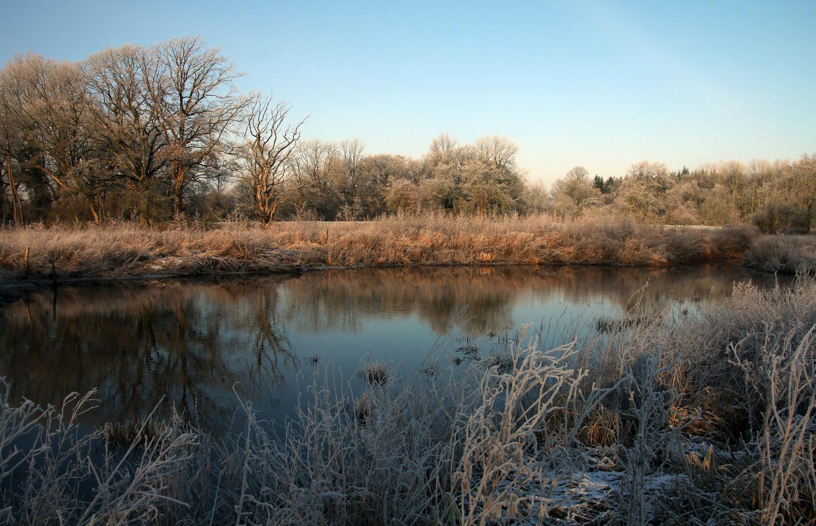 - Flussaue im Januar -
