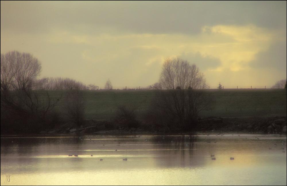 Flusslandschaft 06